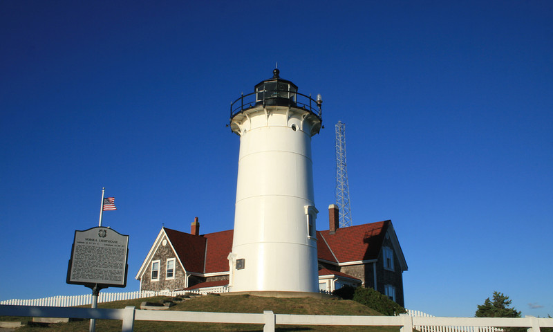 Lighthouse of Cape Cod & Whales off Provincetown