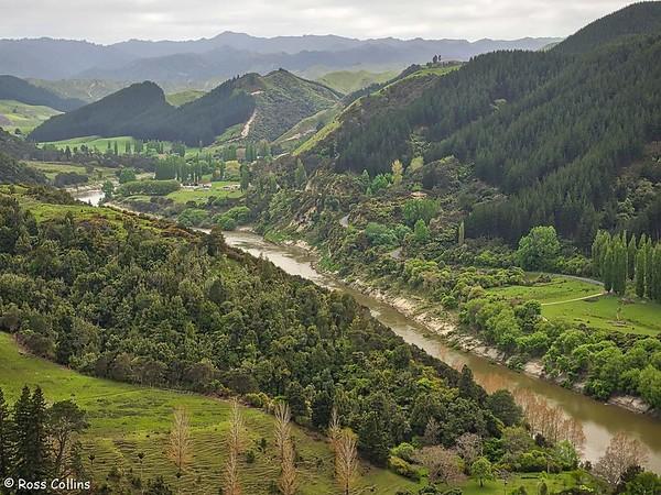 Whanganui River Road 2018