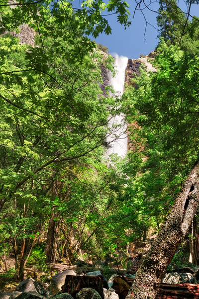 Yosemite -100616-067-Edit.jpg