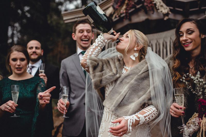 Requiem Images - Luxury Boho Winter Mountain Intimate Wedding - Seven Springs - Laurel Highlands - Blake Holly -1252.jpg