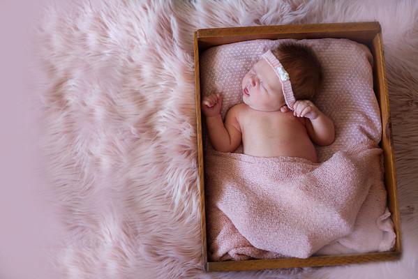 B.B Newborn