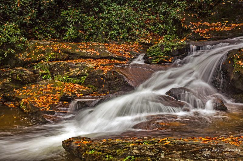 Roaring Creek Falls 0840.jpg
