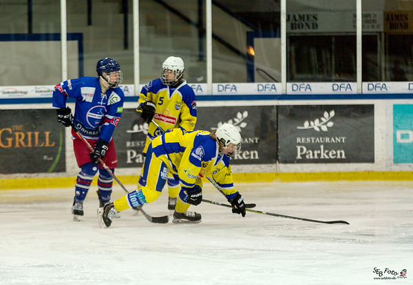Ishockey 25.03.17