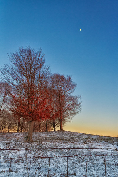 2017-01-07 Snowy Sunset