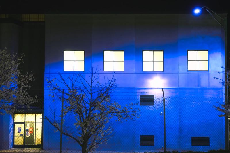 blue-X5.jpg