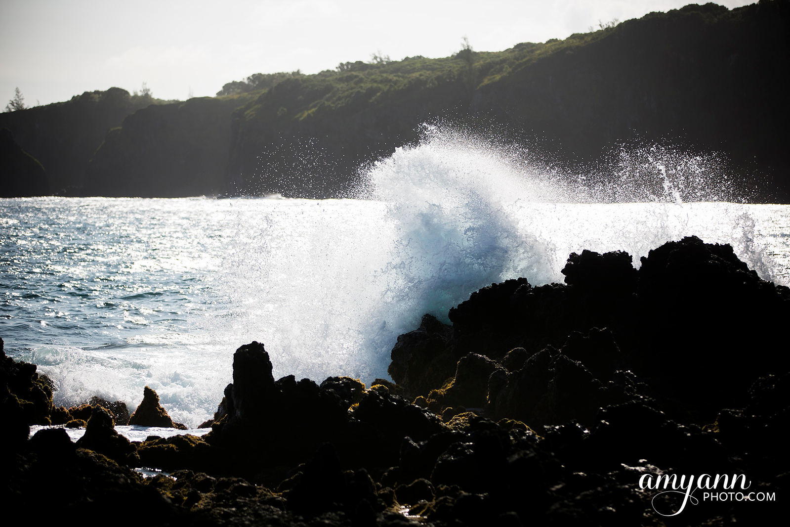 hawaii_amyannphoto_26