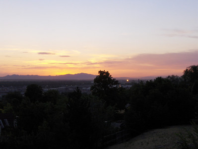2007, Sunset Pictures
