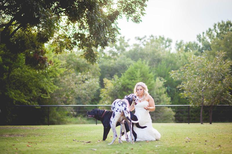 2014 09 14 Waddle Wedding-885.jpg