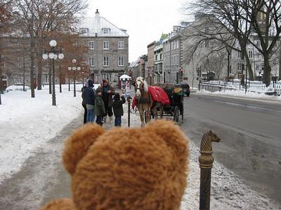Bella Bear's Travels