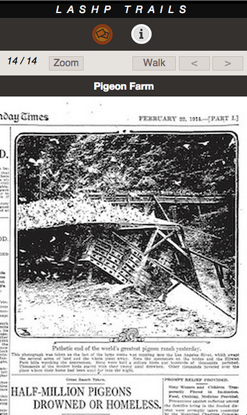 PIGEON FARM 14 A.png