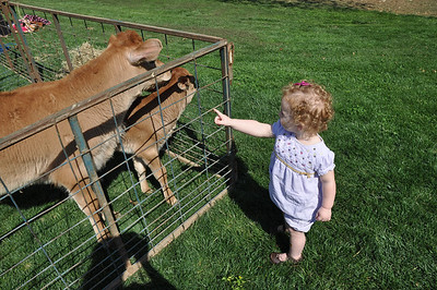 Sofie and Sebastian at the Berry College Petting Zoo