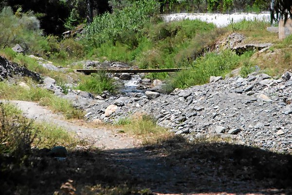 La-ruta-de-los-olivos-centenarios-Orgiva