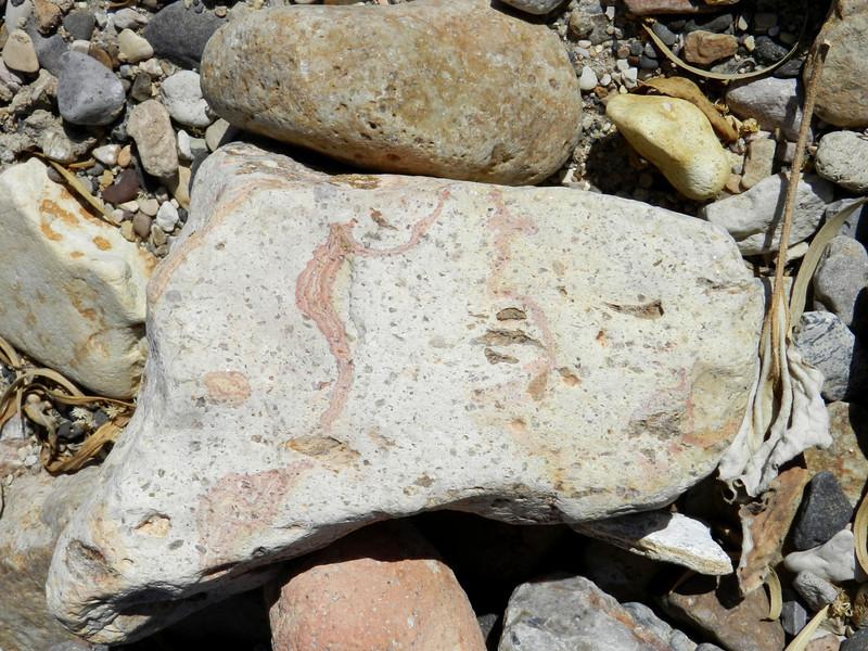 Rocks painted.jpg