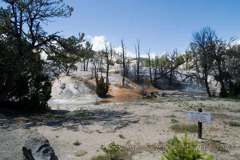 20100713_Yellowstone_2804_1.jpg