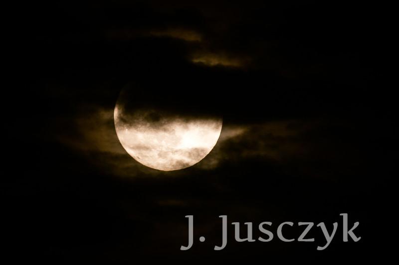 Jusczyk2021-9989.jpg