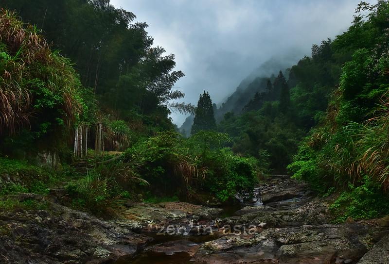 the beckoning - Qingtian 青田
