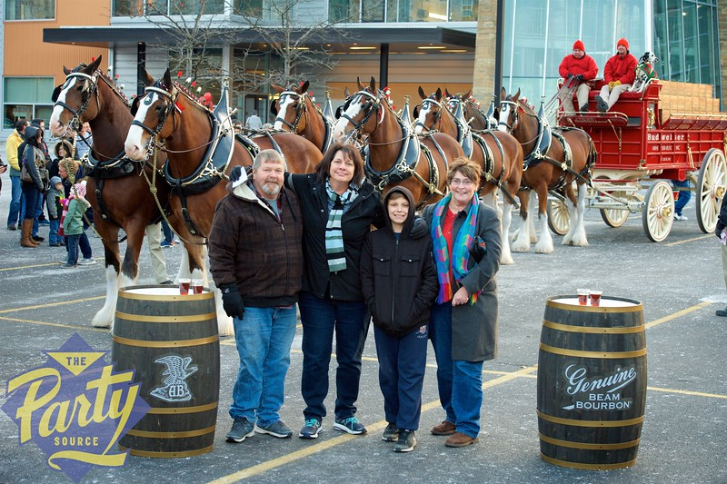 Clydesdale Portraits 216.jpg