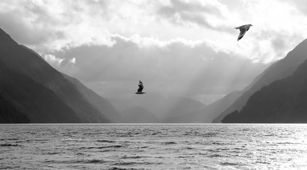 05. Manapouri (Fiordlands)