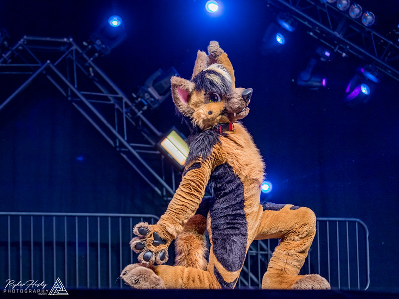 MFF 2018 Dance Comp-2420.jpg