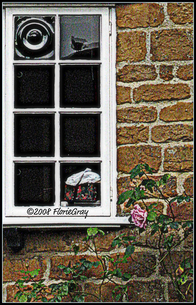 Window with Tea Cozy and Reflected Bird; Wroxton, Oxfordshire, England   Copyright ©2009 Florence T. Gray. This image is protected under International Copyright laws and may not be downloaded, reproduced, copied, transmitted or manipulated without written permission.