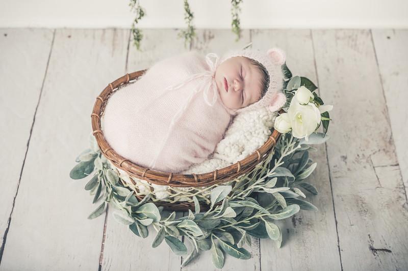 Rockford_newbornphotography_A_042.jpg