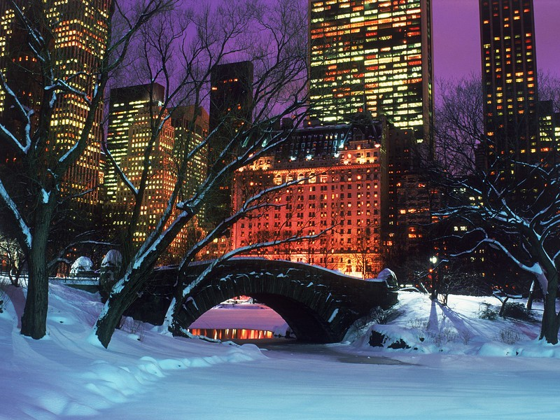 Central-Park-in-Winter-New-York-City.jpg