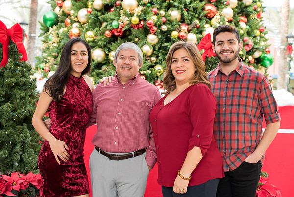 2017 Alvarado Family Portraits