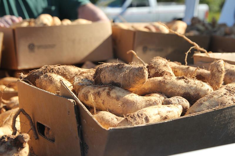 An estimated 30 lbs per box of potatoes.