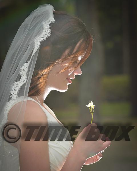 Kara Wilcox Bridals 2012