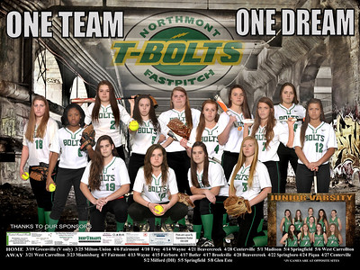 NM Girls Softball Poster