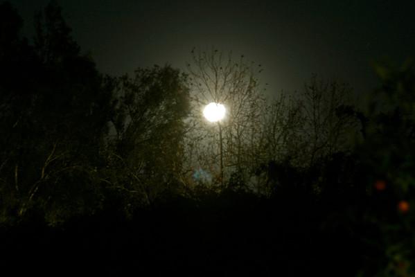 2012-01-22 Moon Shots