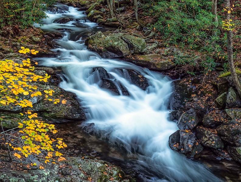 Smoky Mountains_Rivers-2.jpg