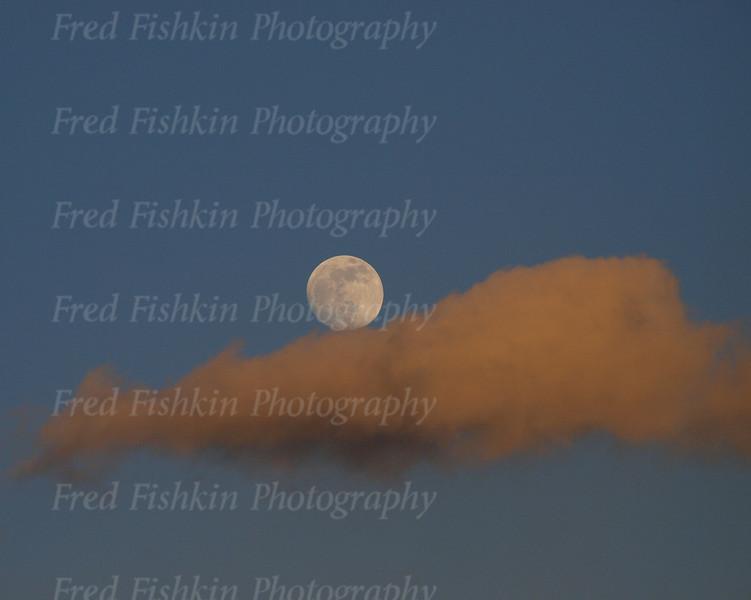 moon at rest.jpg