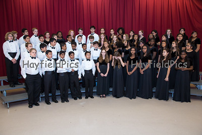 MS Orchestra Group Photos 12/2/15