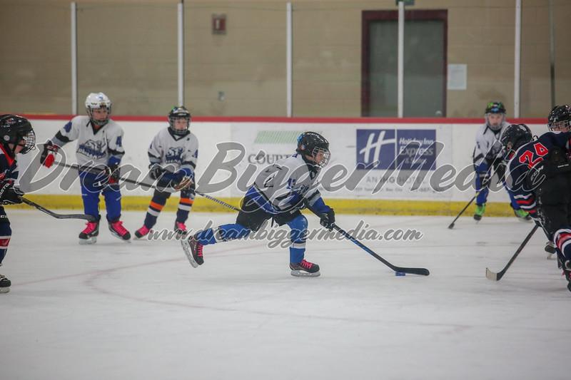 Blizzard Hockey 111719 7891.jpg