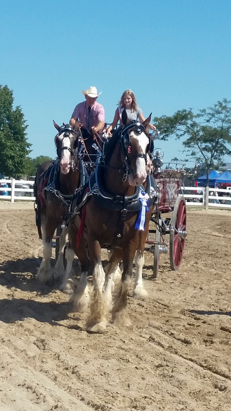 On, Orangeville Agricultural Fair 2016