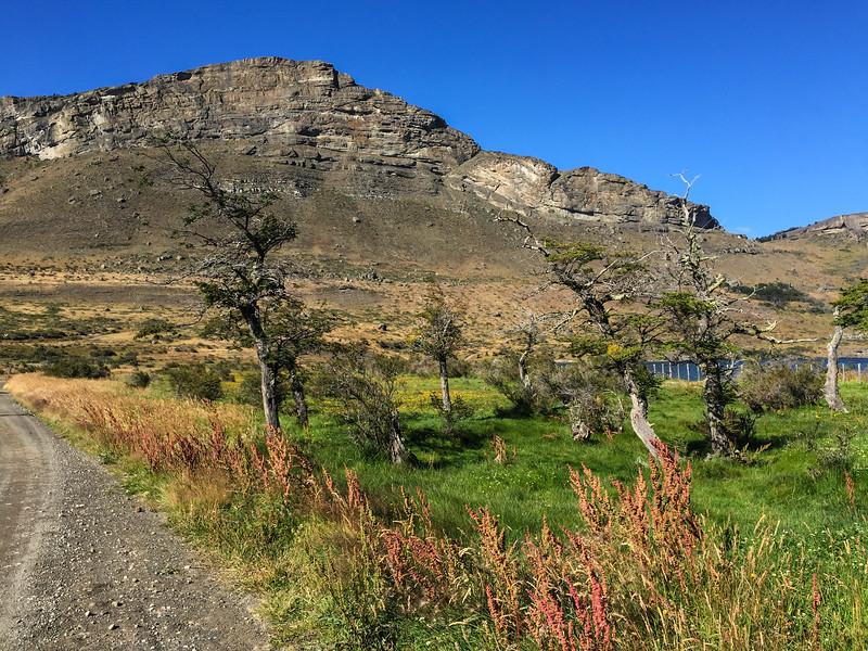 Patagonia18iphone-4469.jpg