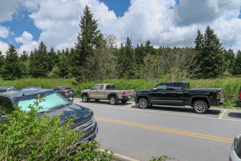 Mountains-to-Sea/Art Loeb Trail @ Black Balsam Road -- 5,900'
