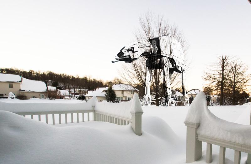 snowfall-05268-Edit.jpg