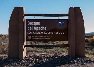 Bosque del Apache NM Nov 2016
