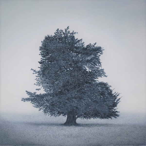 Solitary Pine, SOLD