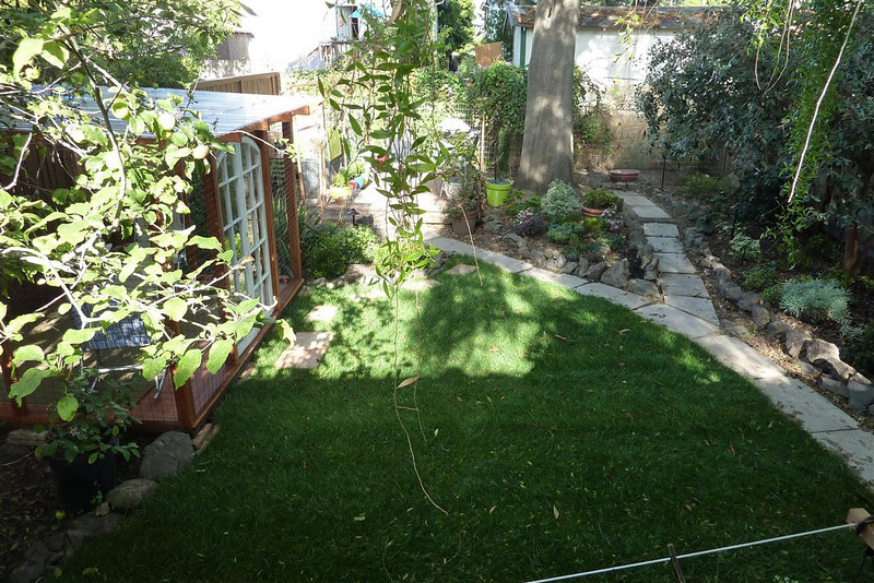 This is a view of the backyard from the deck. on the right is the new cathouse (cat playhouse). At the back left of the yard is a new ground level deck and the entrance to the chicken coop. The coop runs across the width of the backyard.