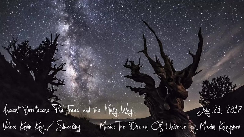 Milky Way Time Lapse Over a Couple of Ancient Bristlecone Pine Trees.