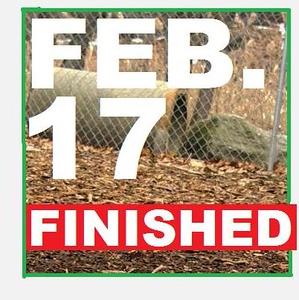 17 FEBRUARY (so far)