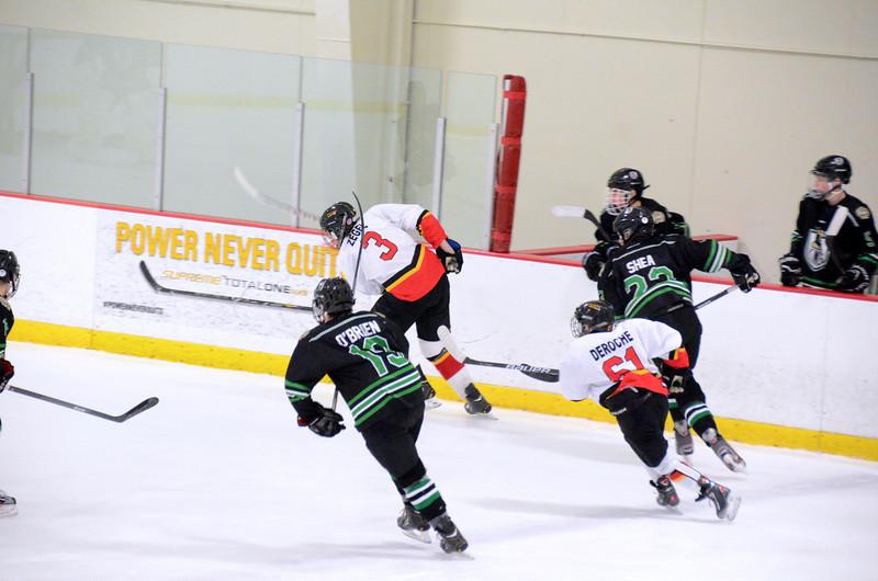 140111 Flames Hockey-019.JPG