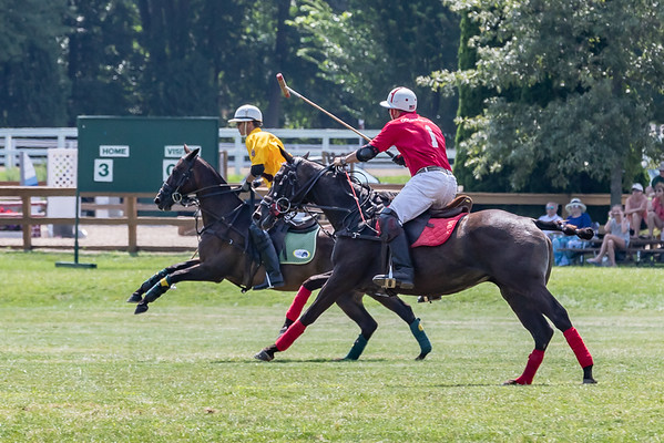 Golds Dragoons Polo at FCHC 2018