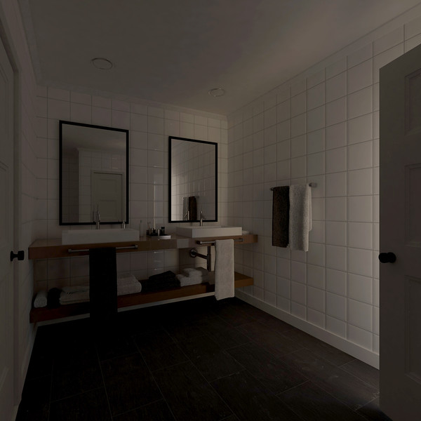 velux-gallery-bathroom-074.jpg