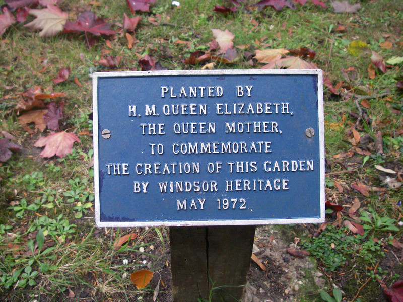 Cool - the Queen planted a tree when i was born :)