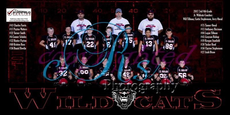 2017 Jr Wildcat Banners
