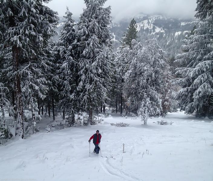 Skiing in the Backyard